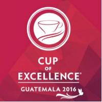 DABOV Specialty Coffee купи най-доброто кафе от COE Guatemala за 2016