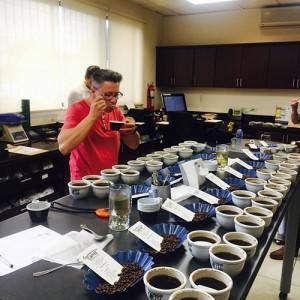 Журито на COE 2017 Коста Рика обяви кафетата-победители