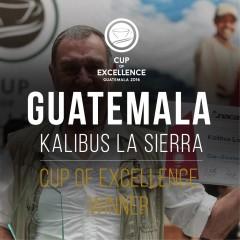 Победител на СОЕ - Гватемала 2016 No 1 - Калибус Ла Сиера