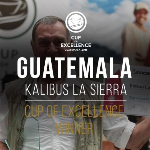 Гватемала Калибус Ла Сиера - Първо място на СОЕ за 2016