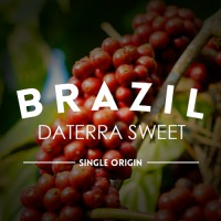 Brasil Daterra Sweet - DABOV Specialty Coffee