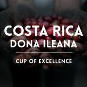 КАФЕ НА МЕСЕЦ ДЕКЕМВРИ 2015 Коста Рика - Доня Илеана - международен победител, COE