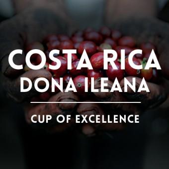 КАФЕ НА МЕСЕЦ ДЕКЕМВРИ 2016 Коста Рика - Доня Илеана - международен победител, COE
