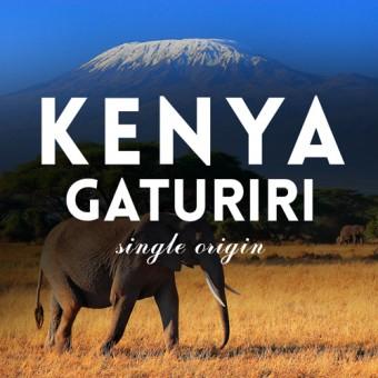КАФЕ НА МЕСЕЦ АВГУСТ 2016 Кения Гатурири 200.8 г