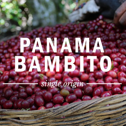 КАФЕ НА МЕСЕЦ ЮНИ 2015 - Панама Бамбито - DABOV Specialty Coffee -200,8 g